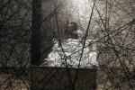 Chiharu Shiota _ Infinity _ Galerie Daniel Templon _ Parigi_ 7.01 / 18.02