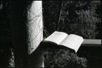 Julião Sarmento «Leggere gli anni '70″_Galerie de France-Lo studiolo_fino all'11.02
